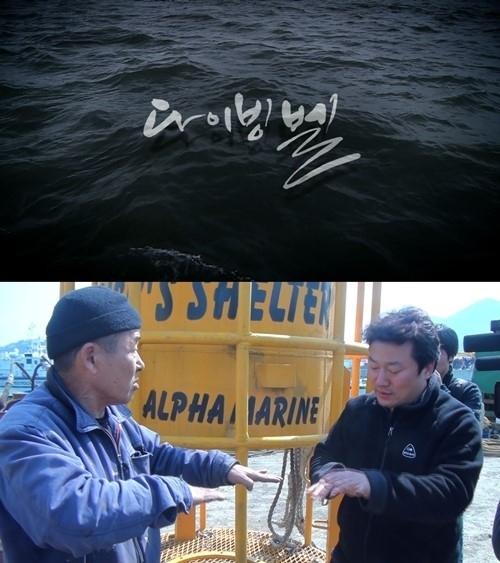 """釜山国際映画祭、セウォル号沈没事故を描いた映画を予定通り上映""""外圧によって取り消した事例がない"""""""