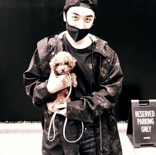 BIGBANGのV.I、子犬を懐に抱いた近況公開…9月の交通事故後Instagramを初更新
