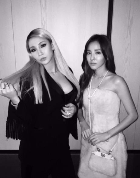 """2NE1のDARA、CLとのツーショットを公開""""久しぶり"""""""