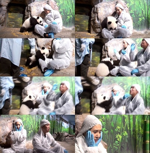 「アニマルズ」少女時代 ユリ、遊んでいたパンダが突然興奮してびっくり